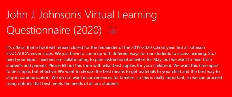 Virtual Learning Questionaire