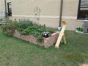 Student Involvement 4 H Fall Butterfly Garden