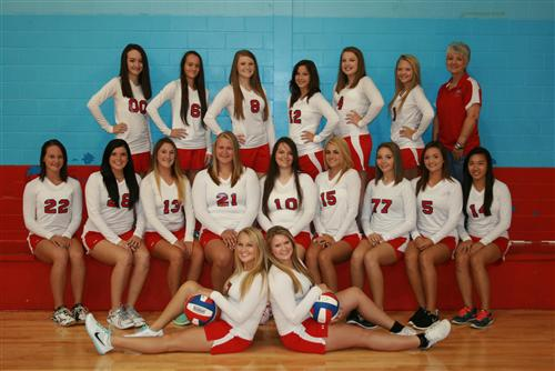 2015 VHS Volleyball